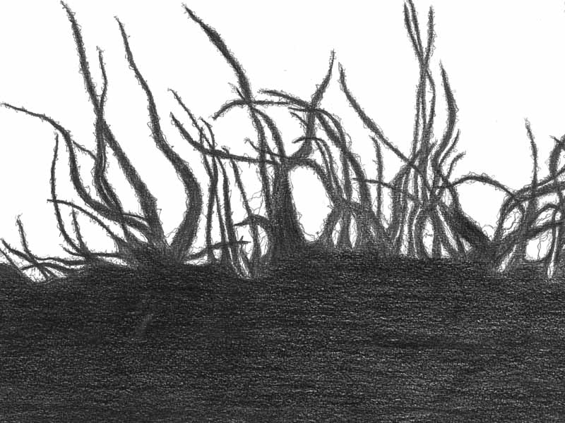 between_04 | 2018 | 30 x 40 cm | Bleistift auf Papier