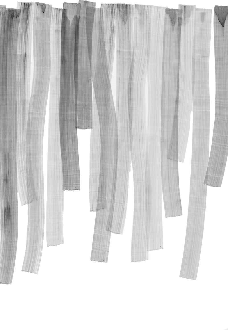 pure_09 | 2015 | 100 x 70 cm | Tusche auf Papier