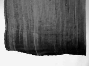 das Foto zeigt eine Zeichnung mit Tusche von Doris Scheuermann