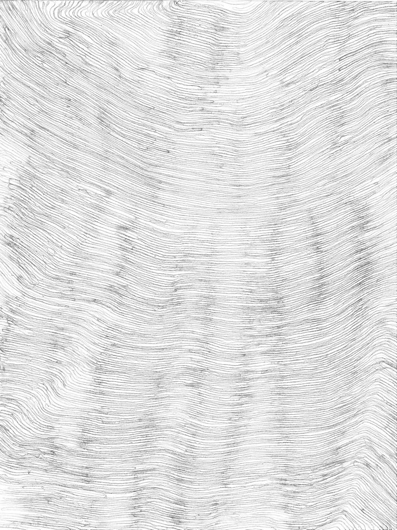 curve_21_-40x30